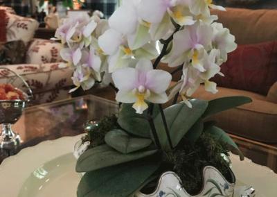 Millena,-Tea,-orchids-in-creamwear-